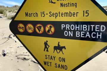 Bird Nesting Restrictions