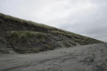 Foredune erosion.