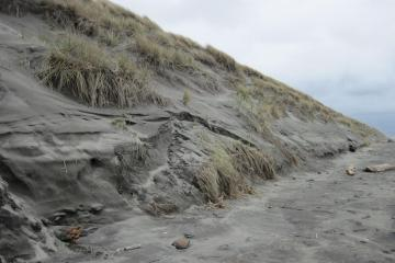 Typical Winter Beach Profile - steep with erosion.