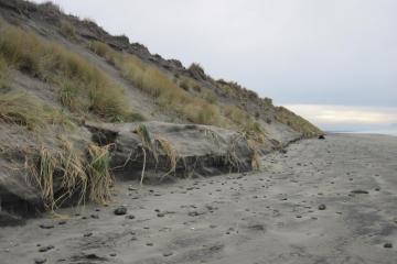Dune Erosion