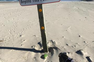 """""""no driving on the beach"""" sign finally back up"""