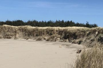Mile 147 clean swept beach.