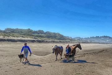 Horses on the beach near Gleneden Beach