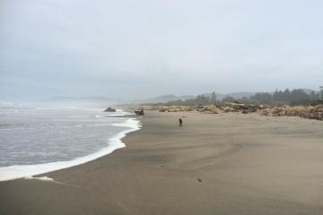 Normal high tide
