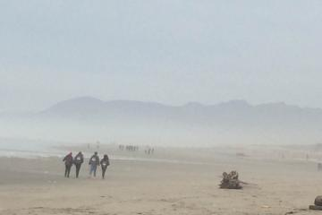 visitors on beach
