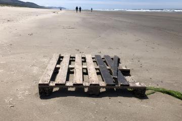 Pallet on beach