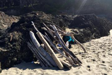 Driftwood Shelters