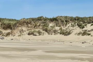Looking at the fordune and the roped off area.