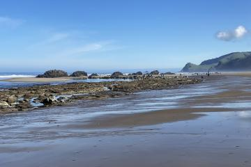 Chinook Winds rocks at low tide, -1.5