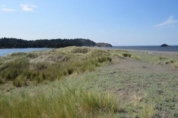 Mile 52 dunes