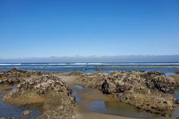 Ocean Beach low tide