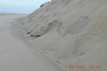 New sand deposits #1, Bayshore Beach bluffs