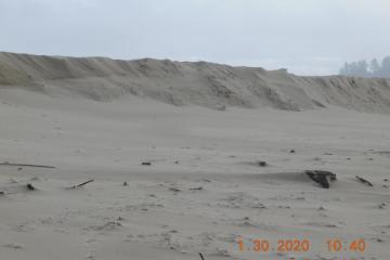 New sand deposits #2, Bayshore Beach bluffs