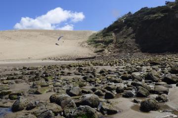 North side of Cape Kiwanda dune