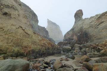 low tide and fog Cape Kiwanda State park