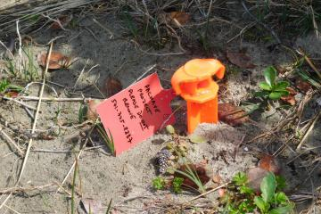 PacWave South in-ground marker