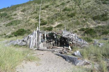 There are a least two driftwood structures that have gradually grown over the past several years. Shown is the larger, further north, further from the beach structure