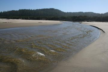 The mouth of Tahkenitch Creek has moved south to a pt very near the N end of Mile 155.
