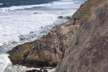 Looking north from Gwynn Knoll, note the Pelagic Cormorant Colony on the cliff