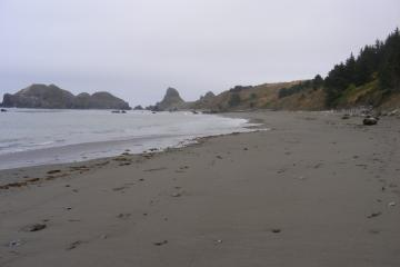 We are standing at the bottom of the beach trailhead and looking north.