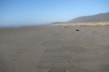 This shot predominantly shows the low-tide zone looking north.  The beach is very clean and debris appears light.