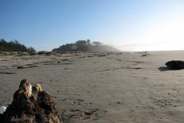 The view is toward the south in the high-tide zone of mile 288.  The forested area on the far left indicates the southern end of mile 288.