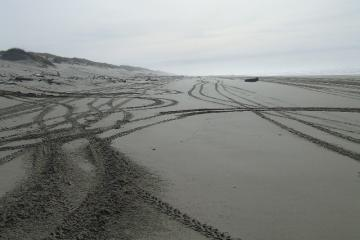 This is typical of the tracks left in the winter.  Summer use makes more roadlike conditions.