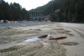 Showing  whale's blood left after it was moved to the burial site located further to the south end of beach below parking lot.