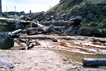 Parking lot south of Driftwood Shores Resort, with trail to beach. Storm drain water enters beach in a wide swath, under stacked logs. Bluff at right shows residence chimney. Camera pointer east.