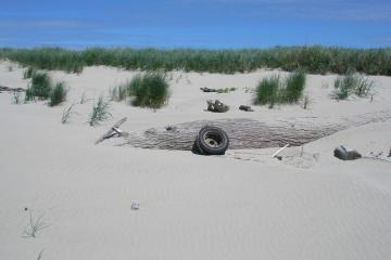 Tire put upright 2.5 miles north of the jetty.  Please pick up.