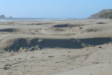 Typical mini-dunes of wind-blown sand built up over winter base