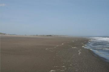 This is typical view on this day. There had been a pretty high tide and everything was wiped clean.