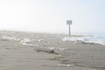foam shows the surf incursion at the snowy plover Habitat Restoration Area, looking south toward the big sign prohibiting motor vehicles