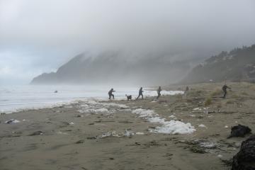 A sneaker wave comes ashore on Manzanita Beach.