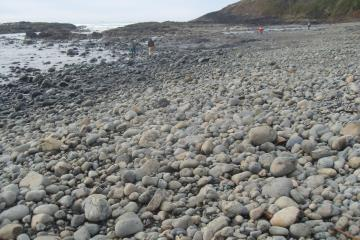 Beach scoured to cobbles and bedrock
