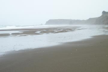looking north along the beach, showing low tide beach.