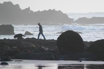 Man and dog, exploring rocks at Fivemile Point at low tide