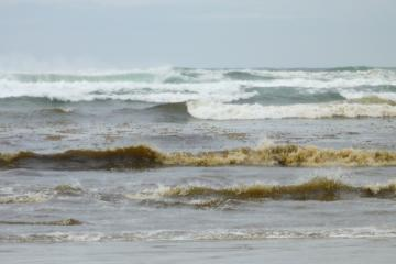 photo of yellowish brown tinged/colored surf froth.  Unknown source/cause.