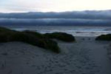 fog bank over ocean.... Manzanita Beach