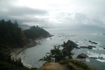 The Center Cove at Cape Arago is accessible but not that easily. We usually examine it from the cliffs above, although we do go down occasionally.