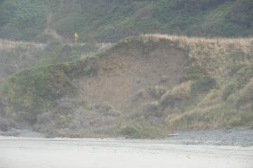 Here is a new area of erosion. This recent slide does not undercut Highway 101.