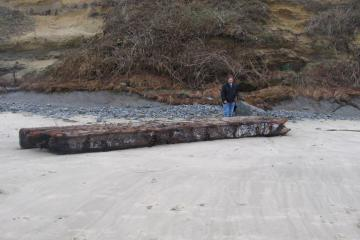 Very large driftwood.  Appears to be several boards bolted together.  May have been a dock?  Appears to have been in water a while.  Metal parts are rusted and there were a lot of barnicles.