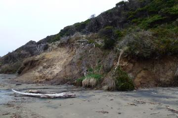 #19 - further north - shows some erosion
