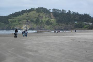 Thousands of tourists have flocked to Newport's Agate Beach to view the 'tsunami dock'