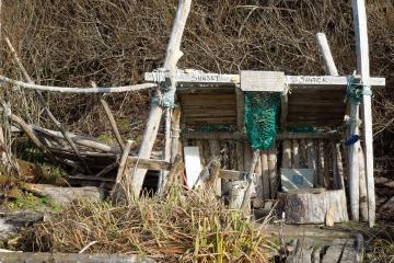 This is a substantial driftwood structure that appears to have been there a very long time. It includes signatures with dates, poetry on the walls, paper and pencils in sealable containers.