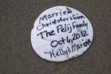sanddollar with writing--- traveled from Kelly's Marina????