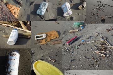 Collage of plastic debris on mile 329