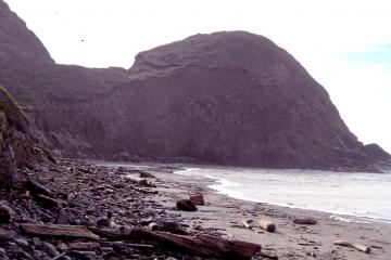 North section looking south, surf reaches bluff.