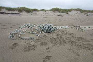 Unfortunately, this rope was buried too deeply for us to remove.