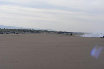 This is looking south towards the rip embayment area that first appeared in January of 2007.  Notice how the sand has filled in the area.